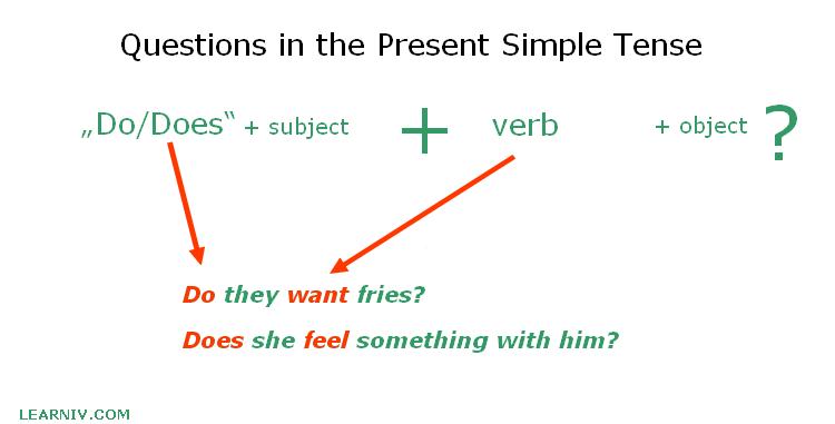 Present Simple question construction